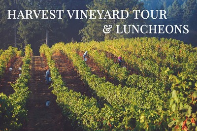 Harvest Vineyard Tour & Luncheon - Sunday, Sept. 22nd